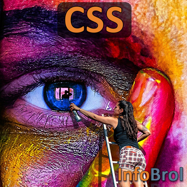Logo du chapitre CSS