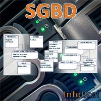 Logo du chapitre SGBD
