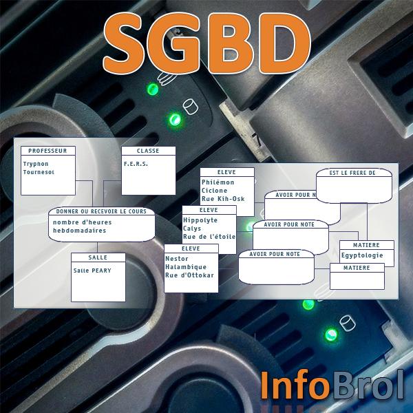 Logo van hoofdstuk SGBD