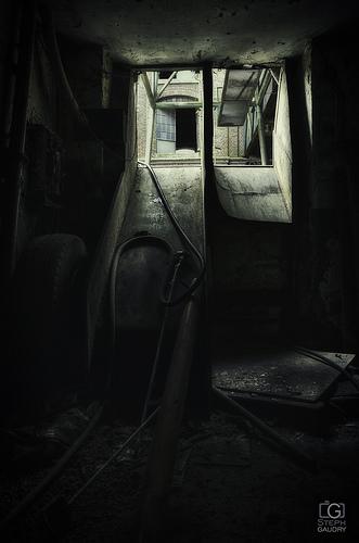 S.C.A.R cellar