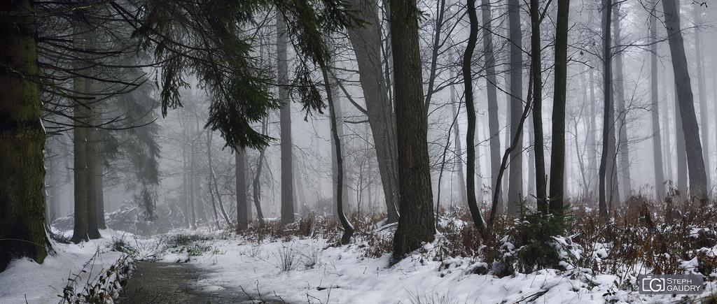 Entre Batis et Harzé 2015_01_25_150025