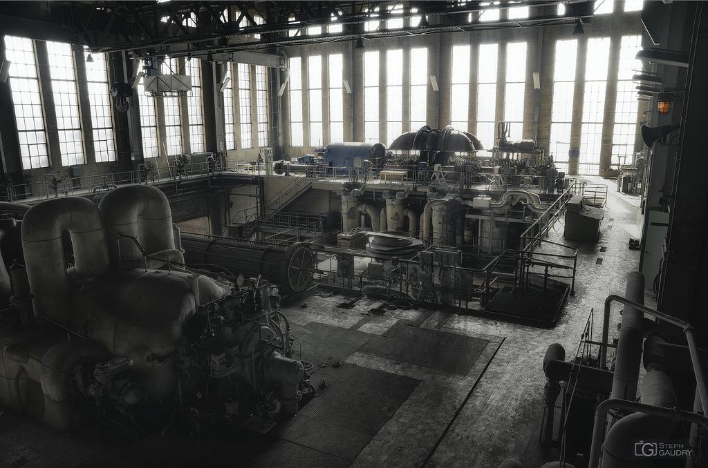 Turbine and generator rotor