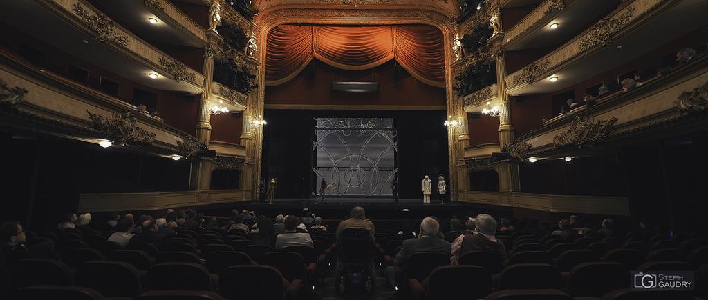Opéra de Liège - Fleur de Peau