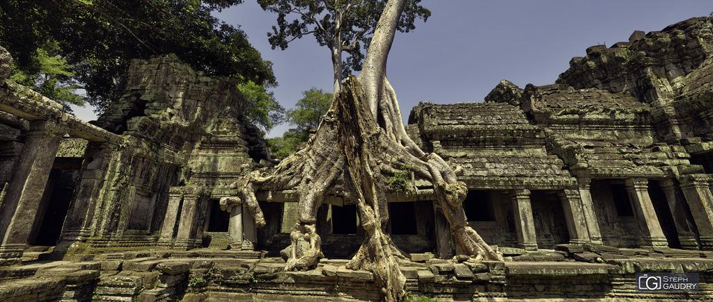 Preah Khan temple 2018_05_02_102123