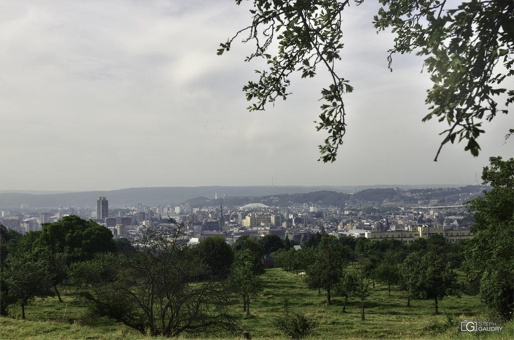 Liège, les vergers