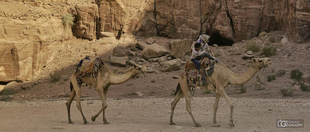 Sur la route de Petra...