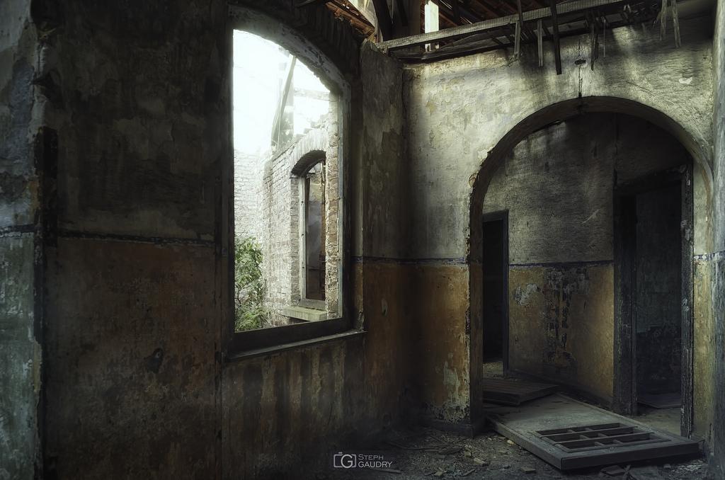 - Photo sans description -