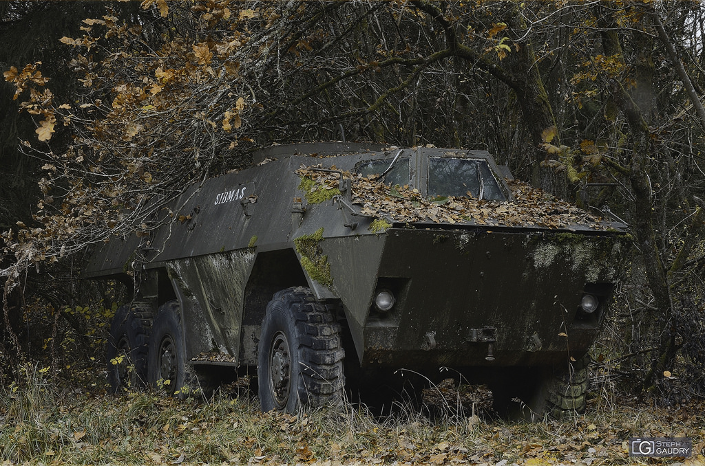 Vehicle graveyard in the woods : armoured fighting vehicle