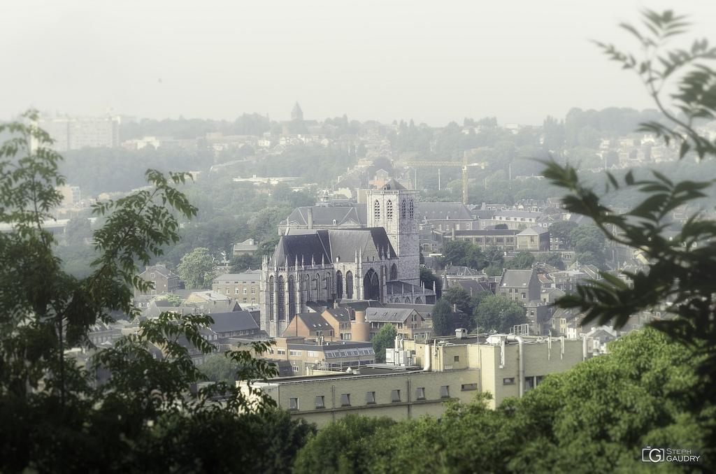 Liège, Basilique Saint-Martin