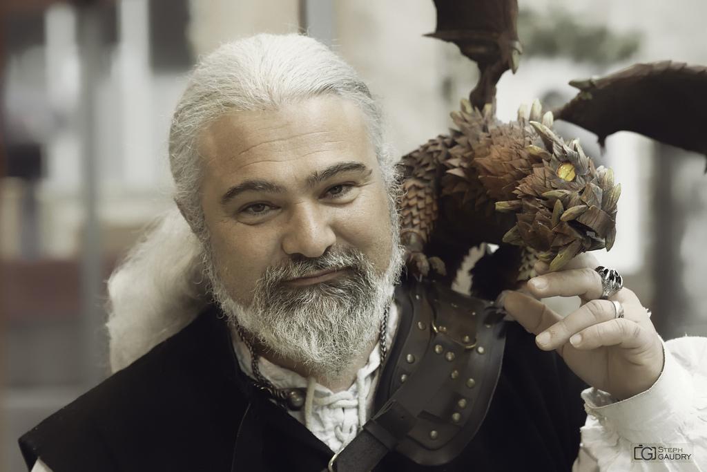 Le dresseur de dragons