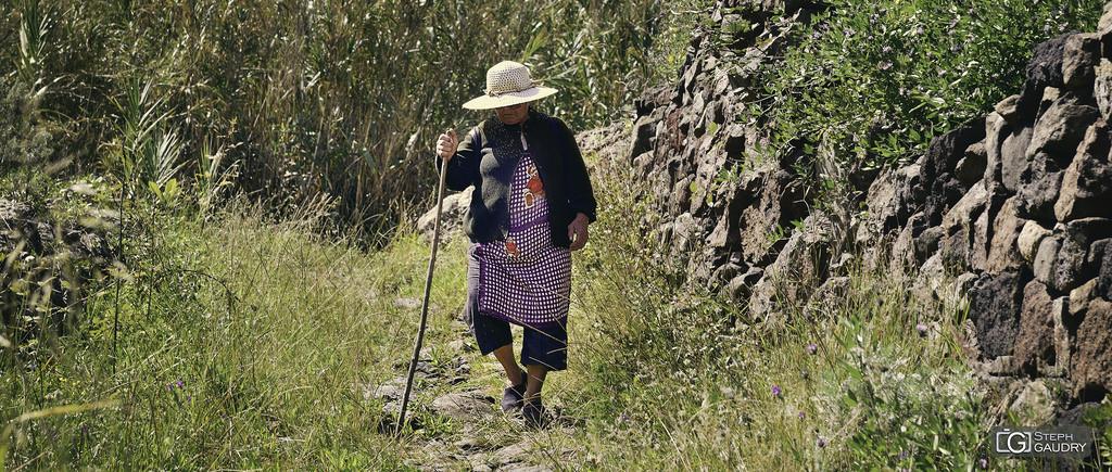 Vaillante habitante de Taganana
