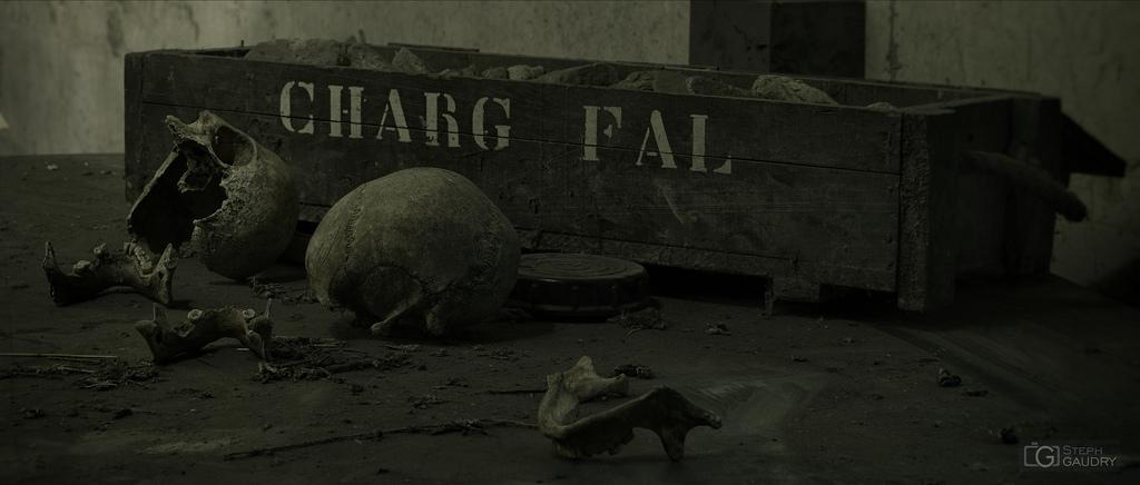 Des ossements cachés pendant la guerre