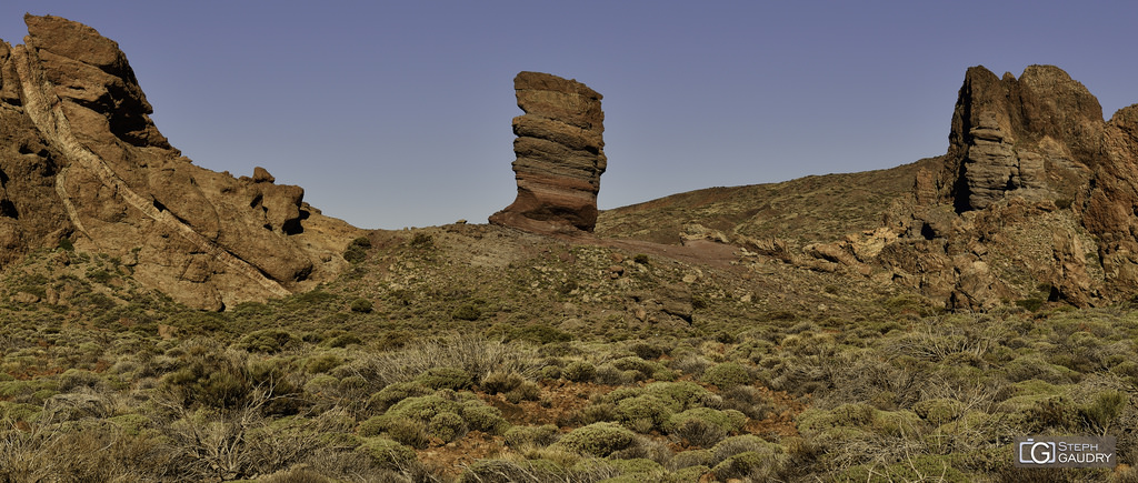 Roque Cinchado