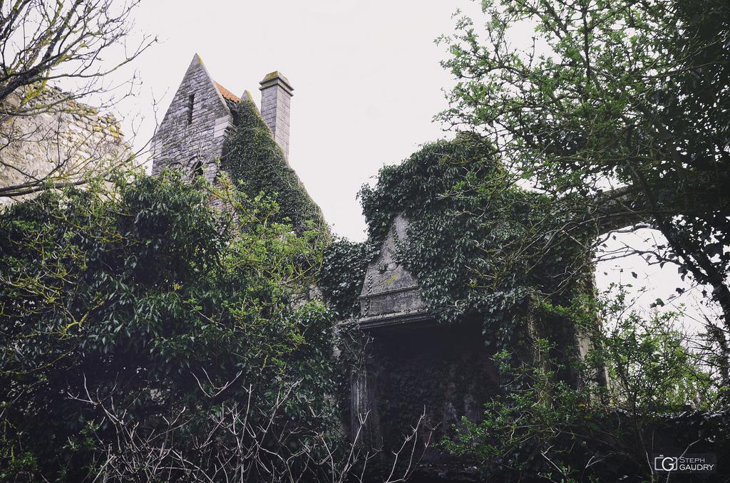 Bernard Wright's strange house - Chimney