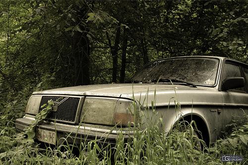 Volvo, retour à la nature