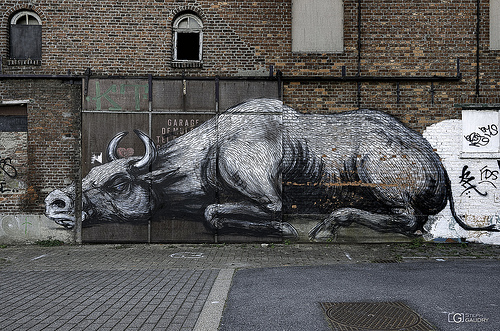 Doel,  cattle by Roa
