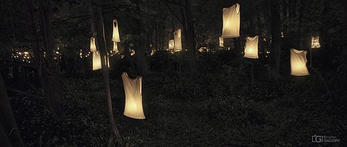 Des illuminés ont laissé tomber la chemise à Chaudfontaine