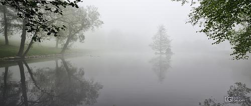 Domaine de Wégimont sous le brouillard