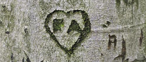 RA <3 AJ, cicatrices de l'amour?
