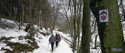 Marche ADEPS 2019_02_03_132047