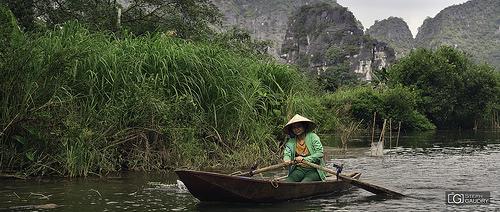 Sur la rivière Ngo Dong (Ninh Binh, Vietnam)