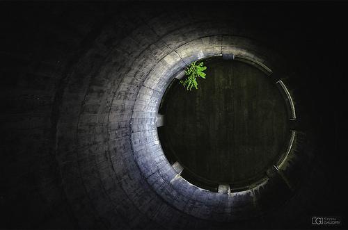 Au fond du trou (enfin, de la cheminée...)