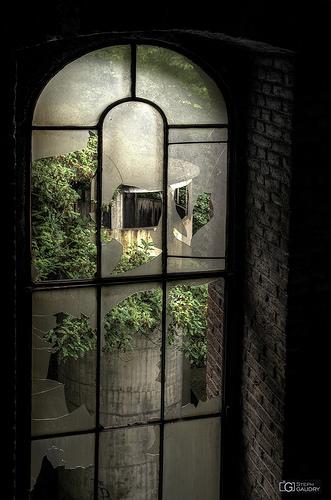 Window and chimney