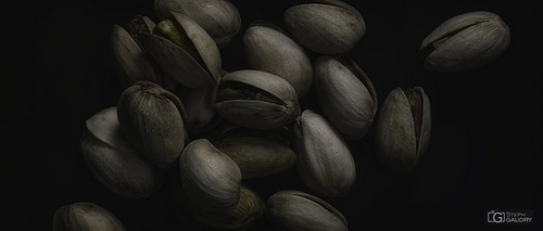 Roasted pistachio seeds with shells