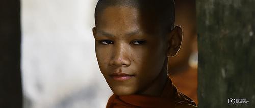 Jeune moine au Cambodge