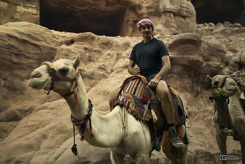 Le chameau c'est l'animal en dessous...