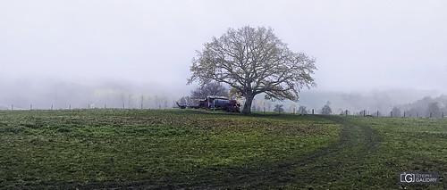 Ravel, ligne 33 - brouillard