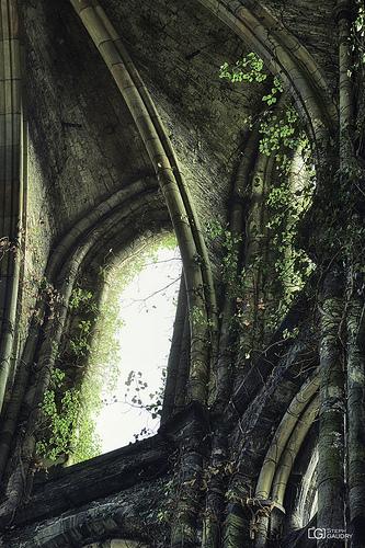 Abbaye de Villers: Lumière divine - HDR