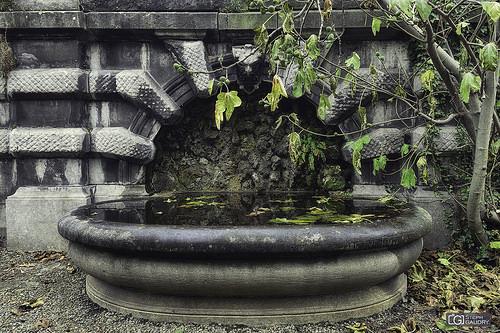 La fontaine du jardin botanique