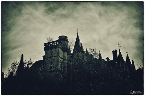 Noisy vintage, castle on the woods