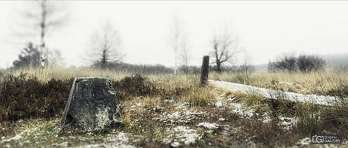 Hautes Fagnes, fin des caillebotis de la Baraque Michel
