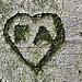 Thumb RA <3 AJ, cicatrices de l'amour?