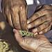 Thumb Prière de se laver les mains avant de prendre le désert