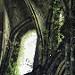 Miniature Abbaye de Villers: Lumière divine - HDR