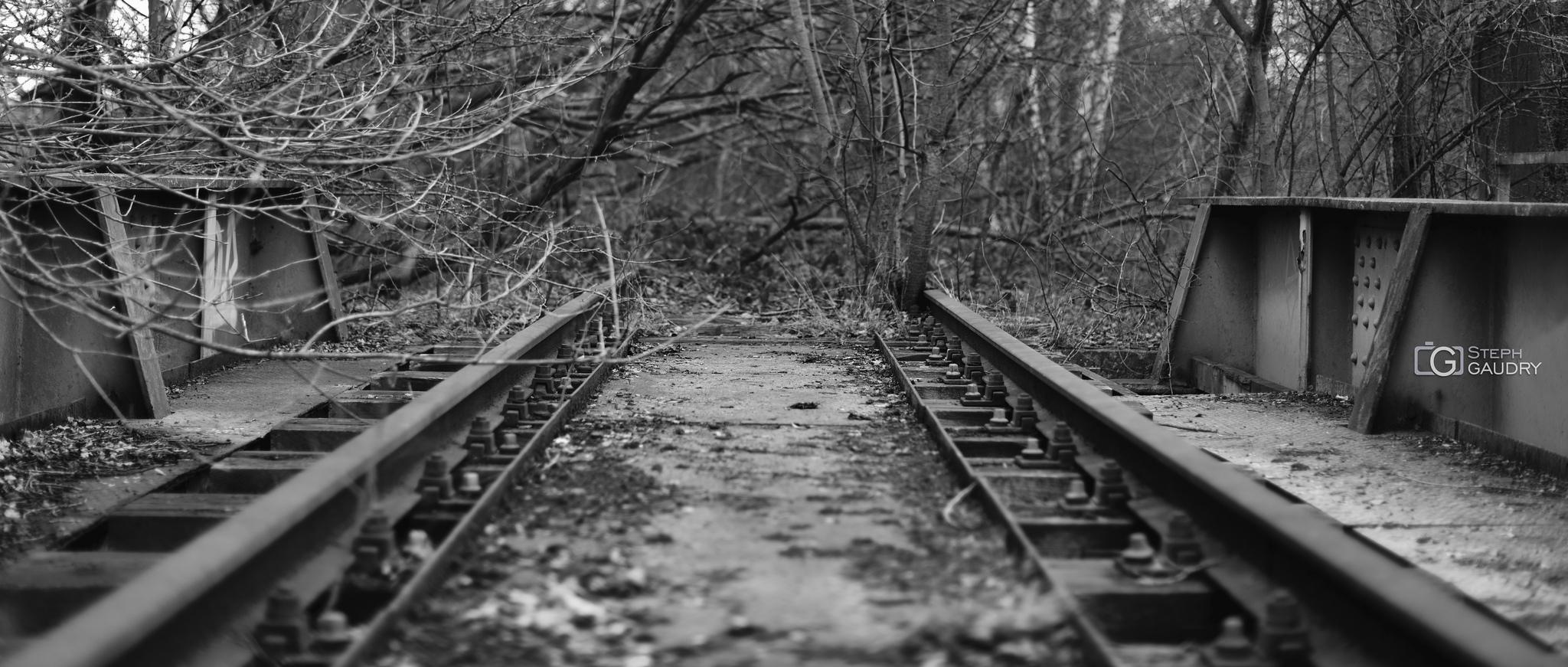 Sur la voie de la nature