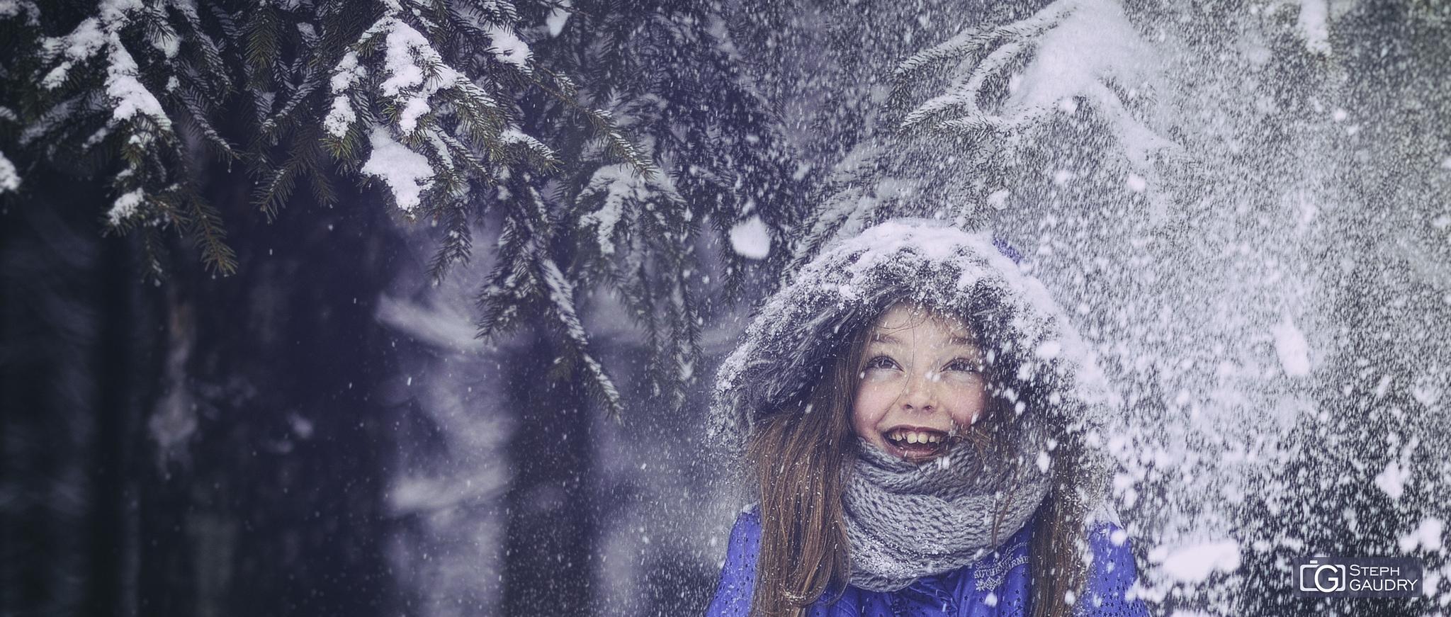 Les joies de la neige [Click to start slideshow]