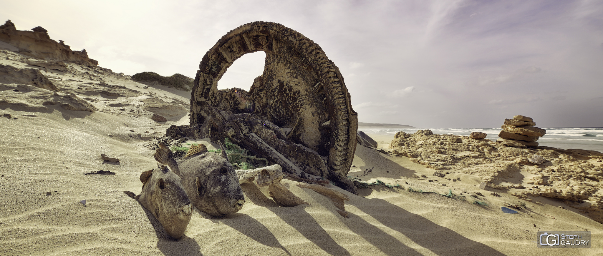 Les dents de la mer (Cabo Santa Maria) [Klik om de diavoorstelling te starten]