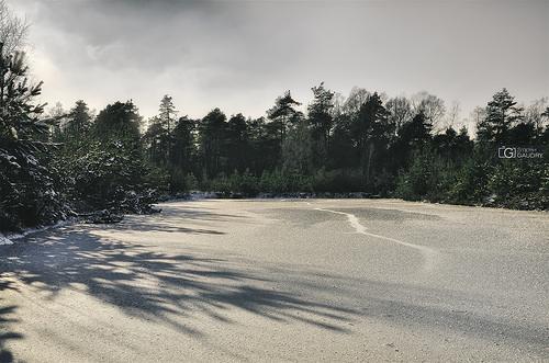 Lac gelé dans la fagne de Malchamps