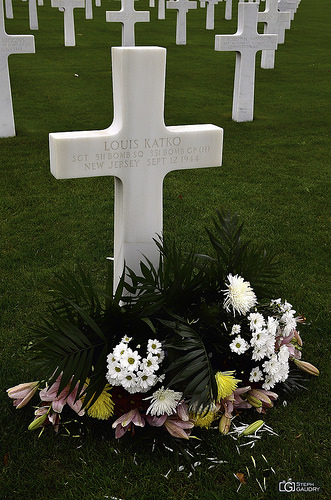 Ardennes American Cemetery - flowers