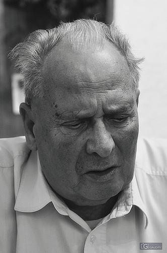 Portrait 20110806-1
