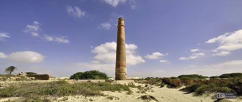 Ruines d'une ancienne fabrique de briques