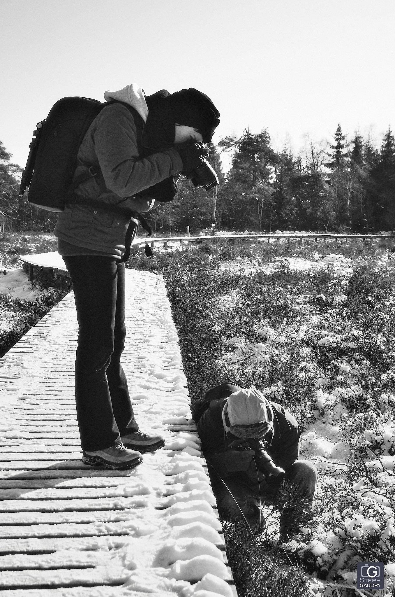 Serial photographers [Cliquez pour lancer le diaporama]