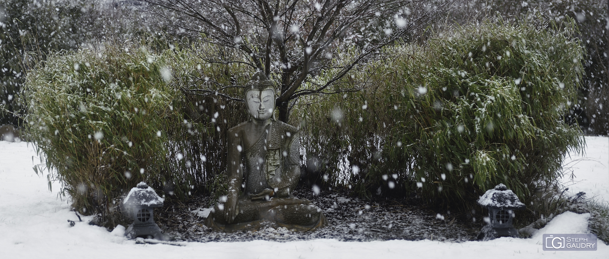Méditation sous la neige [Cliquez pour lancer le diaporama]