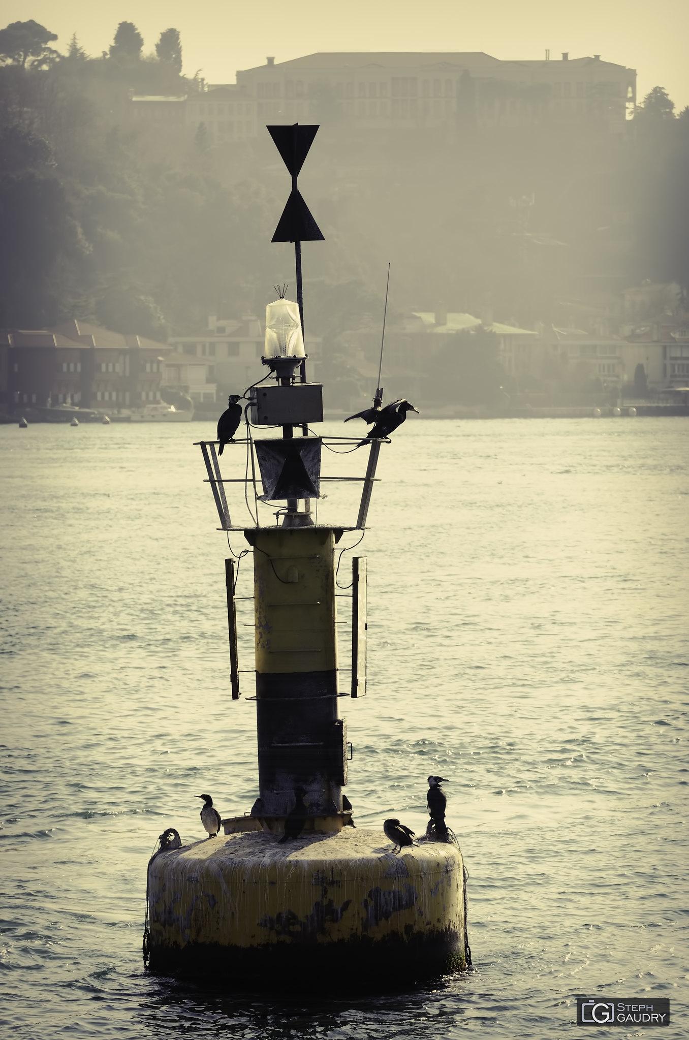 Balise aux cormorans [Cliquez pour lancer le diaporama]