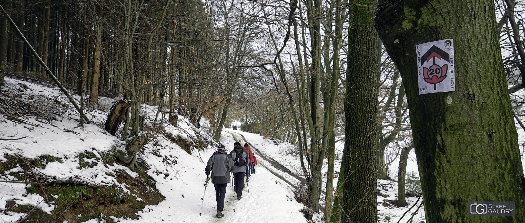 Marche ADEPS 2019_02_03_132047 [Click to start slideshow]