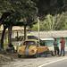 Thumb Coccinelle orange le long de la route de Desplayado (MEX)